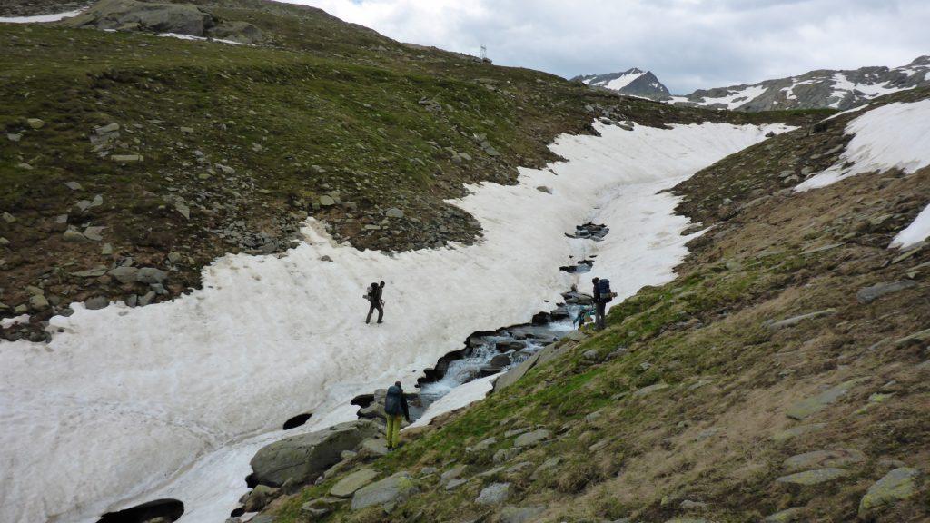 098 Wildes Trekking - Team Bildung - 2019.07.14 _ 14-22-26 (2500x1406)