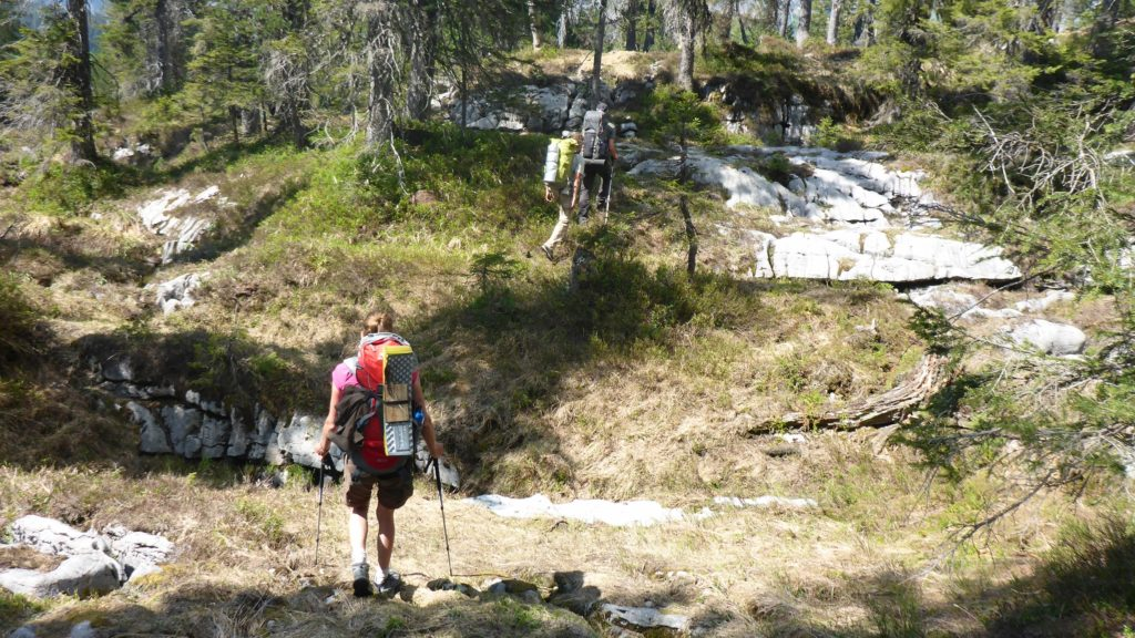 161 Natur-T-Raum _ Wildes Trekking _ 2017.05.27 _ 14-18-32 (2500x1406)