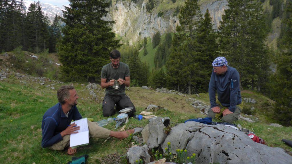 169 116 Natur-T-Raum _ Wildes Trekking _ 2017.05.27 _ 09-16-52 (2500x1875)